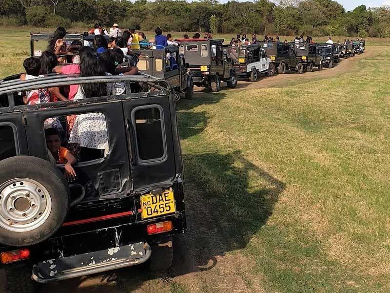 Die Engel bei der Jeep Safari in Kaudulla