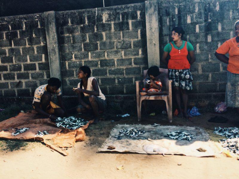 Die Fischweiber von Marawila