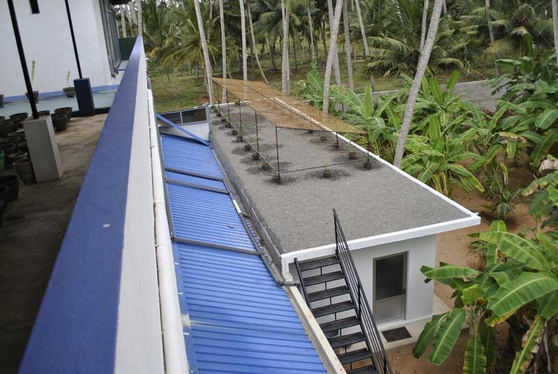 Der neue Dachgarten und Schattenspender