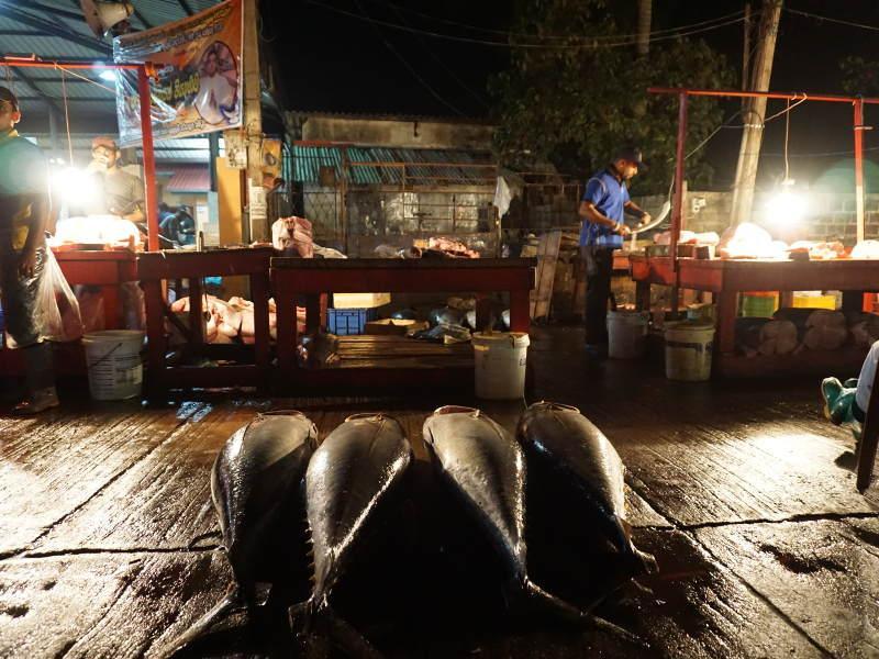 lokaler Fischmarkt in Negombo