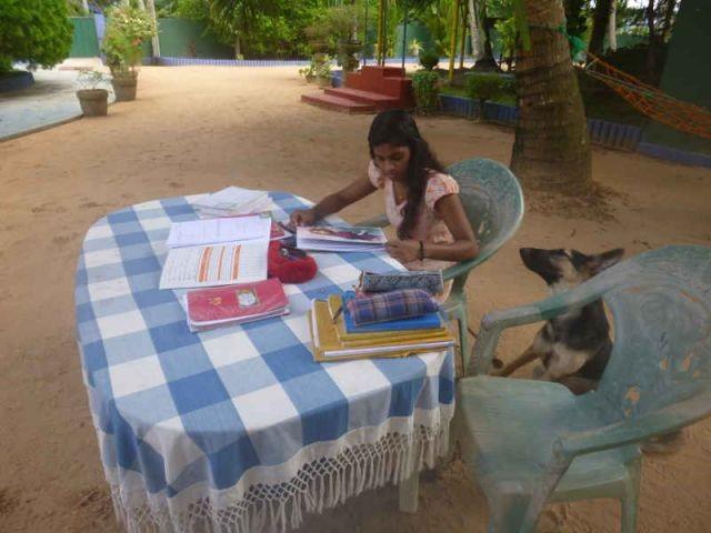 Sodi sitzt an einem Tisch und lernt für die Schule. Neben ihr sitzt die Hündin Lady
