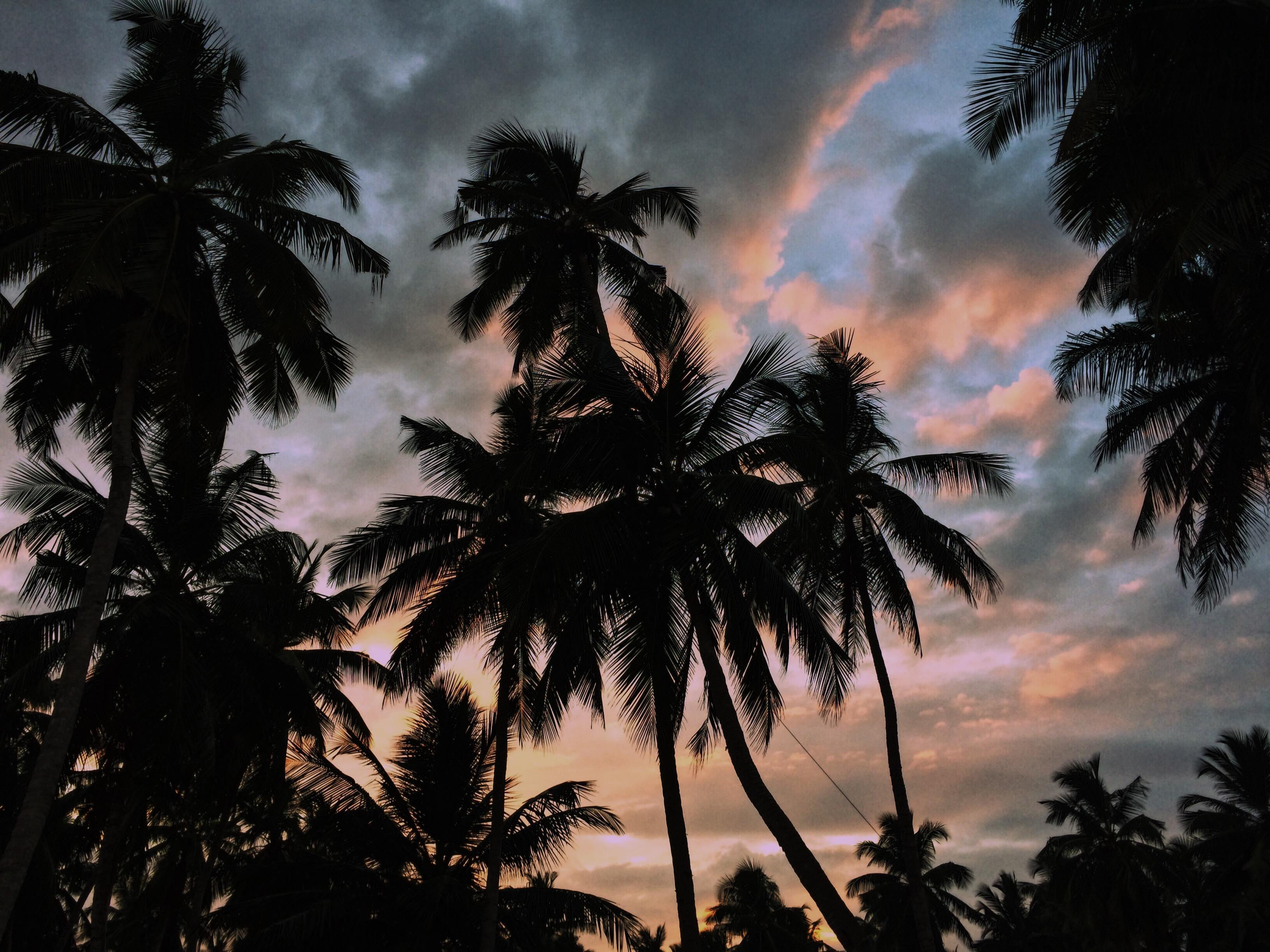 Ruhige Abende nach lauten Tagen