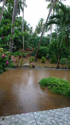 Das Ausmaß des Regens
