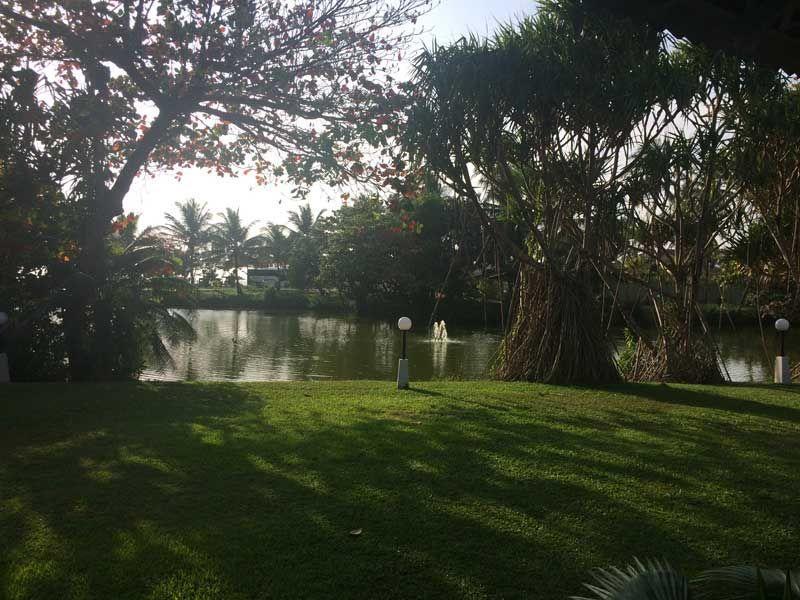 Wiese mit See im Palm Bay Hotel